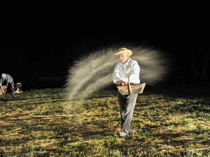 Le semeur, à la volée